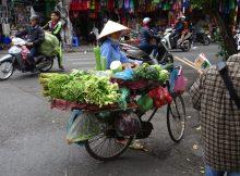 Gemüse auf Rädern