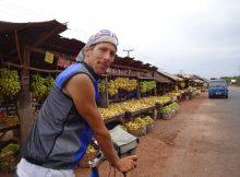 der Bananenmarkt
