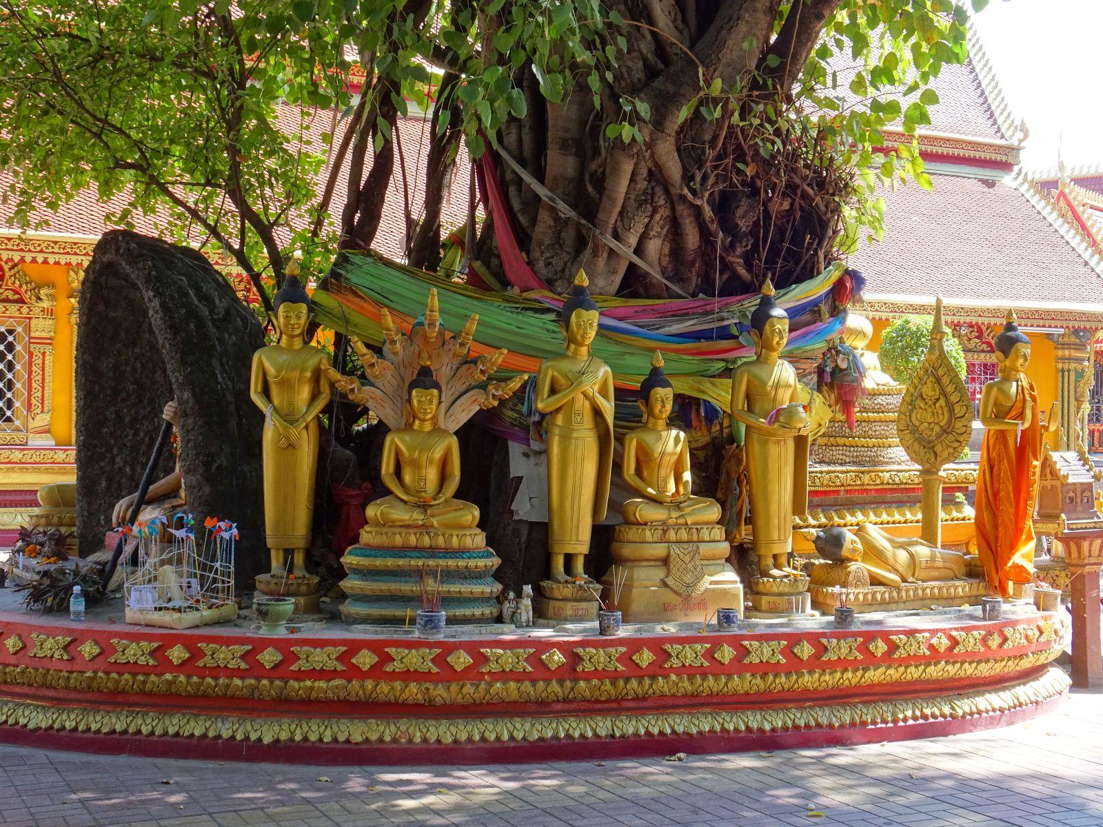 02.01.2017 – 09.01.2017 von Thakhek nach Vientiane